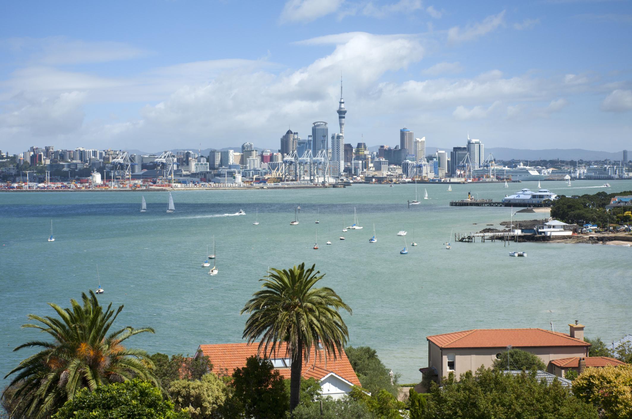 Foto de Nuevas oportunidades para estudiar o investigar en Nueva Zelanda