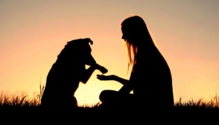 Foto de Mascotas y niños, un vínculo más allá del desarrollo emocional