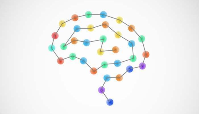 Foto de Semana Mundial del Cerebro: actividades para descubrir todo sobre este órgano vital