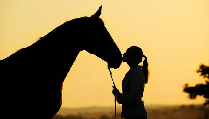 Foto de Trabajar con animales, haz de tu pasión tu empleo