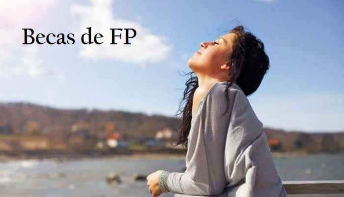 Foto de Cien becas que llegan como aire fresco para estudiar FP