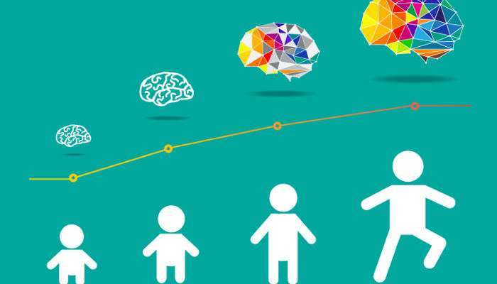 Foto de El aprendizaje en edad temprana puede influir en el posterior desarrollo del cerebro