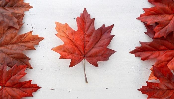 Foto de ¿Cómo y dónde hacer un voluntariado en Canadá?