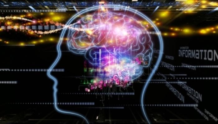 Foto de Los bilingües activan diferentes redes cerebrales en función de la ortografía de la lengua que lean