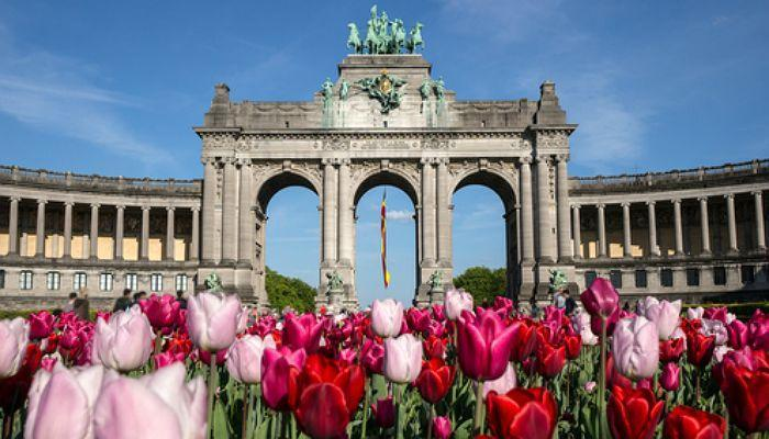 Foto de Cinco becas que debes conocer si quieres estudiar en Bélgica
