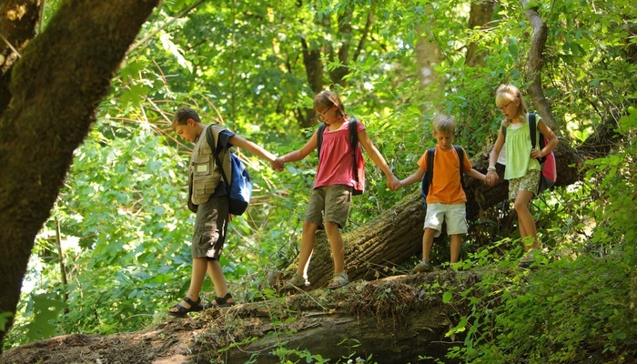 Foto de 8 consejos para elegir el mejor campamento de verano