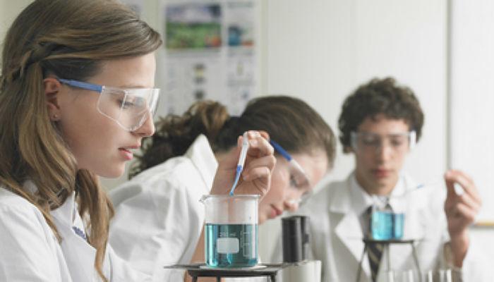 Foto de Se convocan 15 becas de verano para iniciarse en la investigación química