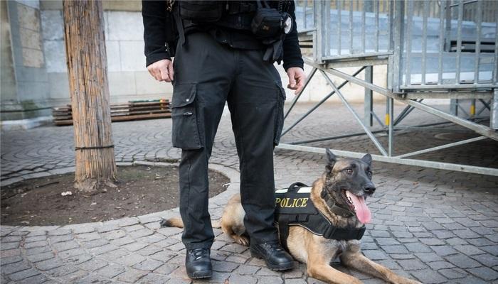 Foto de ¿Cuáles son las pruebas físicas de acceso a los Cuerpos y Fuerzas de Seguridad?