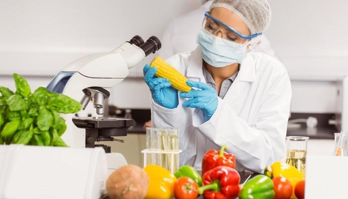Foto de ¿Quieres trabajar en la industria alimentaria? Este curso te interesa