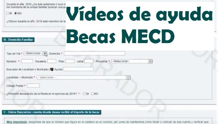 Foto de ¿Cómo solicitar una beca MECD? Vídeos de ayuda para que no te pierdas