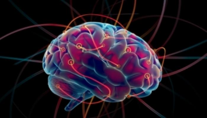 Foto de ¿Qué es lo que provoca en tu cerebro aprender un idioma?