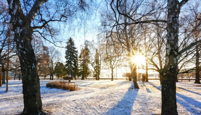 Foto de Becas para estudiar un máster en Turku, la ciudad oficial de la Navidad en Finlandia