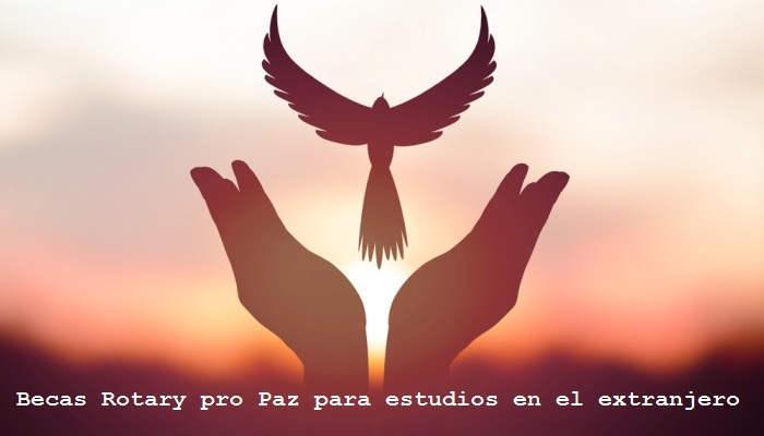 Foto de La Fundación Rotary lanza sus becas Pro Paz para estudios en el extranjero