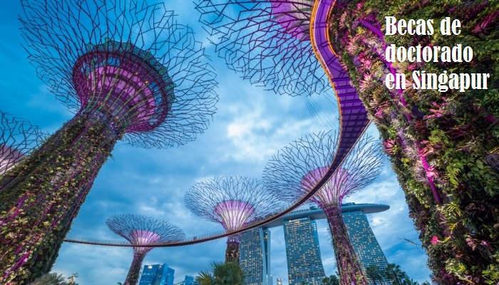 Foto de Becas de 1.800 euros al mes para empezar y terminar un doctorado en Singapur