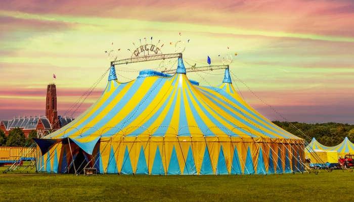 Foto de Había una vez... un circo que buscaba maestros con ganas de viajar