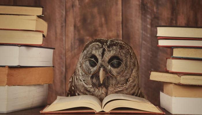 Foto de Dime cómo lees y te diré tu nivel de idioma, según el MIT