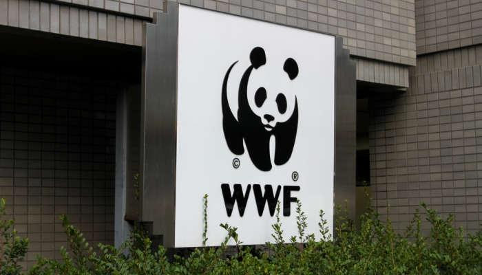 Foto de Voluntariados de la WWF para latinoamericanos