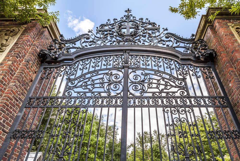 Foto de Harvard lanza 50 becas Radcliffe para artistas y académicos