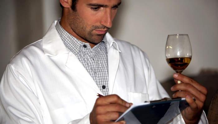 Foto de Llegan becas para investigar el vino dirigidas a menores de 40 años