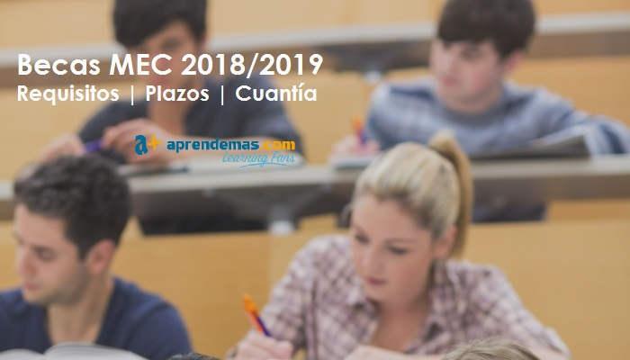 Foto de Becas MEC 2018-2019: Preguntas y respuestas sobre las ayudas para estudios postobligatorios
