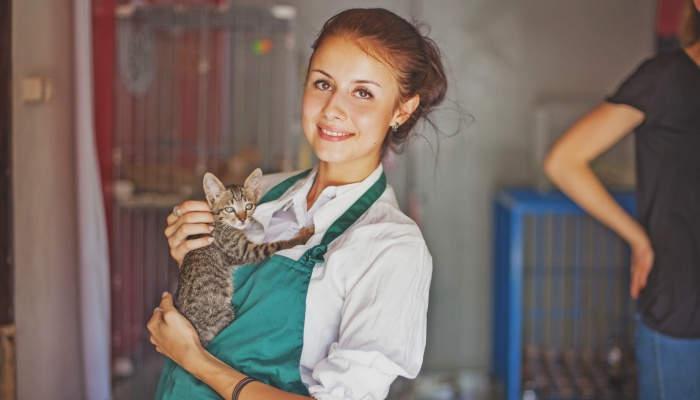 Foto de 6 cursos pensados para amantes de los animales