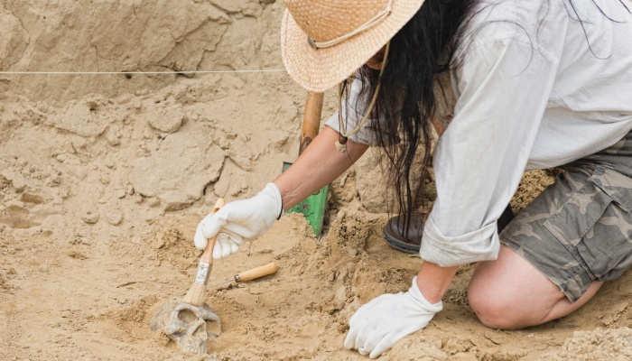 Foto de Cómo ser arqueólogo: pasos y requisitos para lograrlo