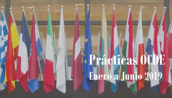 Foto de Prácticas en la OCDE: empieza 2019 con visión internacional