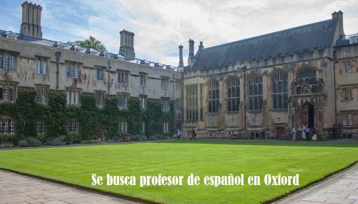 Foto de Se busca profesor de español para dar clase en Oxford