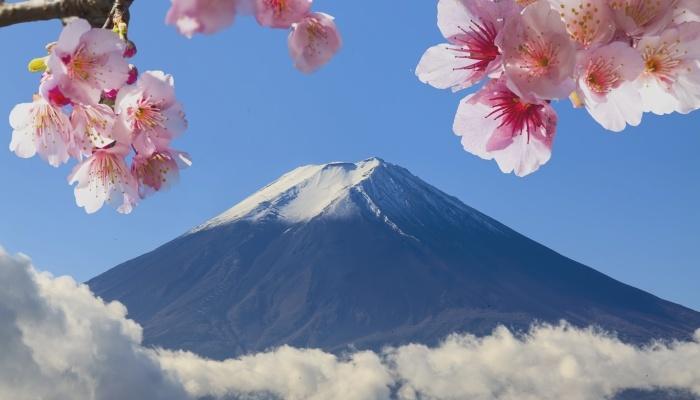 Foto de Becas Vulcanus de prácticas en Japón con todos los gastos pagados