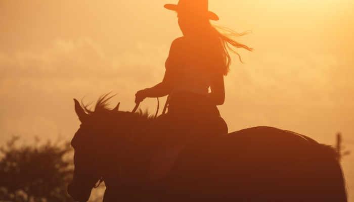 Foto de Trabajar con caballos en Francia y otras oportunidades al paso