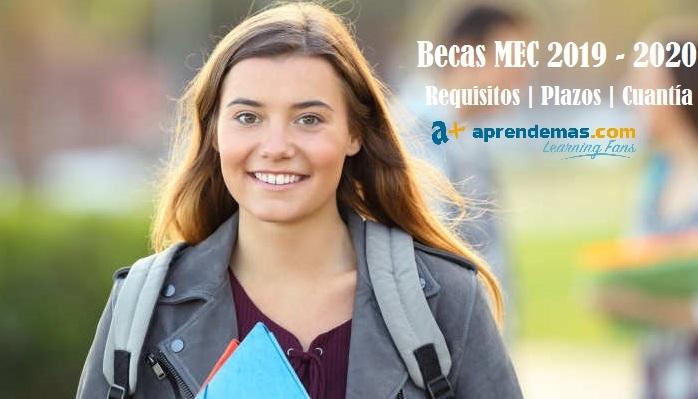 Foto de Becas MEC 2019-2020: respuestas a tus dudas sobre las ayudas para estudios postobligatorios
