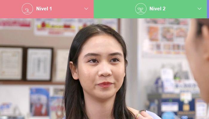 Foto de El Ministerio de Educación nipón lanza una web para aprender japonés