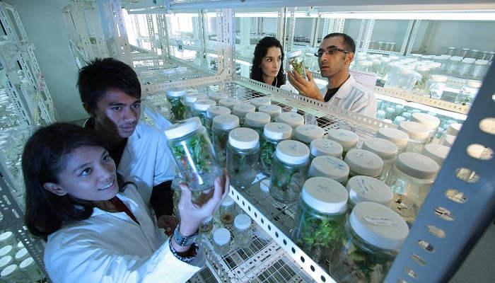 Foto de ¿Por qué estudiar Biotecnología? Razones para un sector clave a causa de la pandemia
