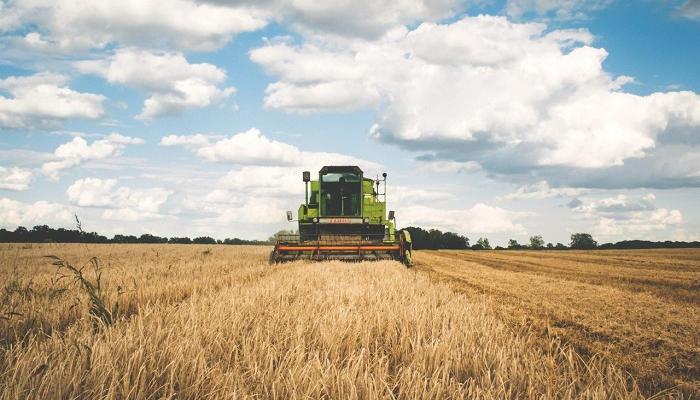 Foto de Llegan prácticas del Fondo Español de Garantía Agraria: 11 meses y 1.150 euros mensuales