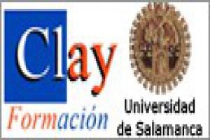 CLAY FORMACIÓN - AREA DE COMPETENCIAS PROFESIONALES Y HABILIDADES DIRECTIVAS