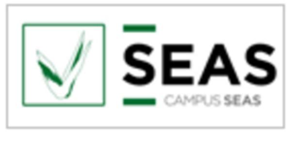 SEAS, Estudios Superiores Abiertos (Cursos especializados)