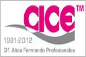 f6058a6e0 CICE: Escuela Audiovisual, de Diseño gráfico, 3D y Nuevas Tecnologías.  Presencial 300 Consultar