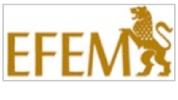 Ir a EFEM Escuela de Formación Empresarial