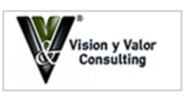 Visión y Valor Consulting S.L.