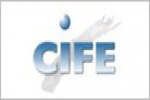 Consultoria Informatica CIFE - Formacion