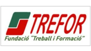 Trefor Castellón