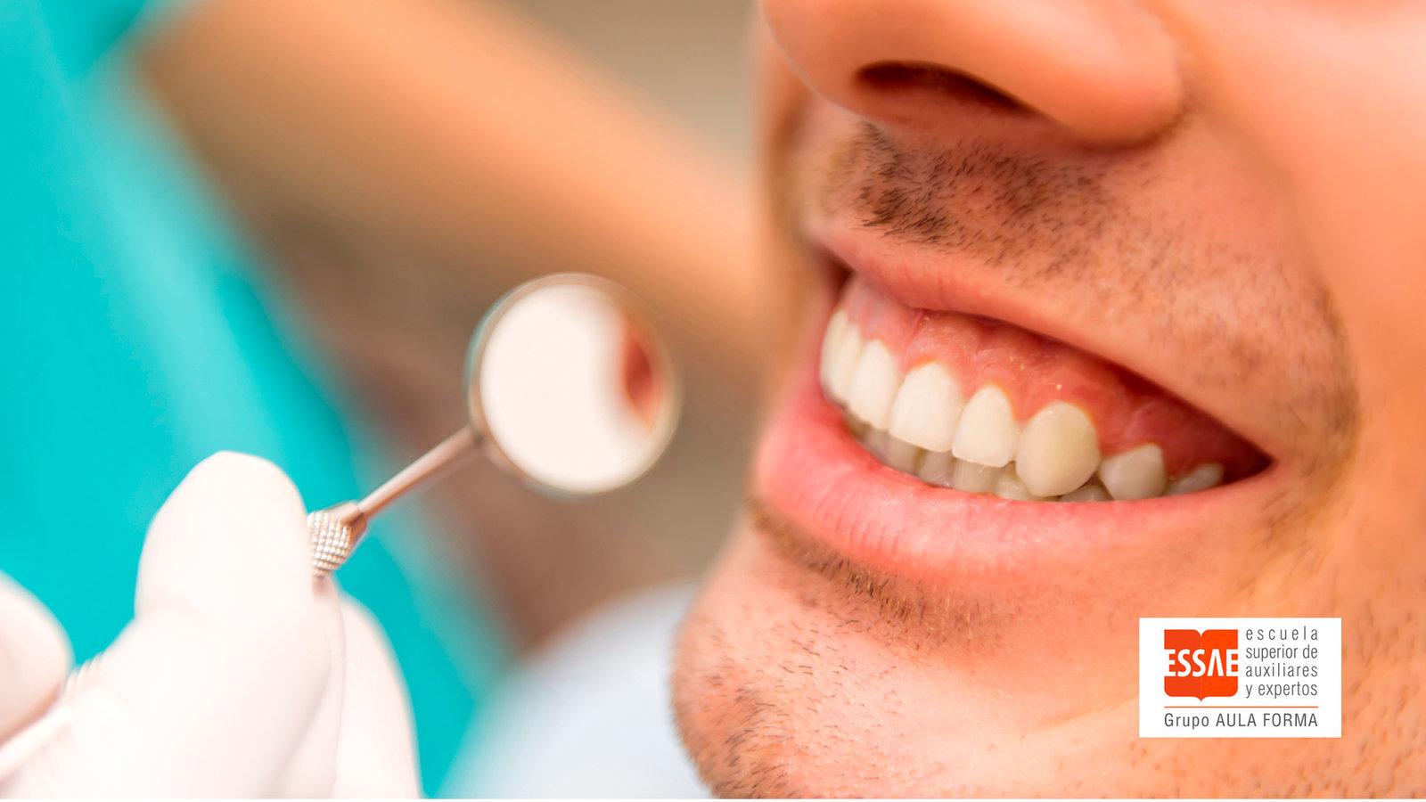 Odontología. ESSAE FORMACIÓN, líderes en la formación para el empleo.