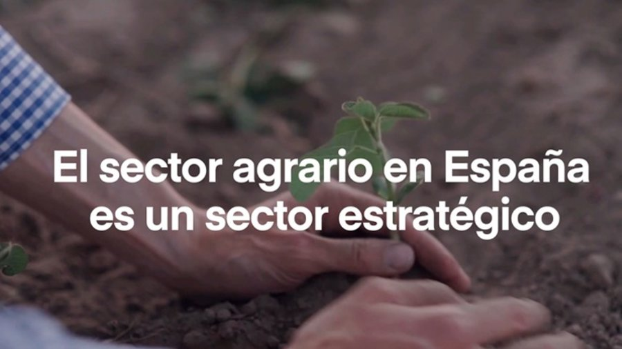 Desde Item formación presentamos esta iniciativa del SEPE  junto con FUNDAE para capacitar a los empresarios y trabajadores del sector agroalimentario